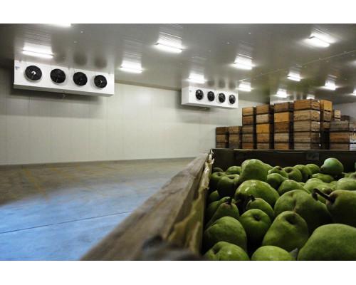 """Овощехранилища под """"Ключ"""" с Холодильными Установками."""
